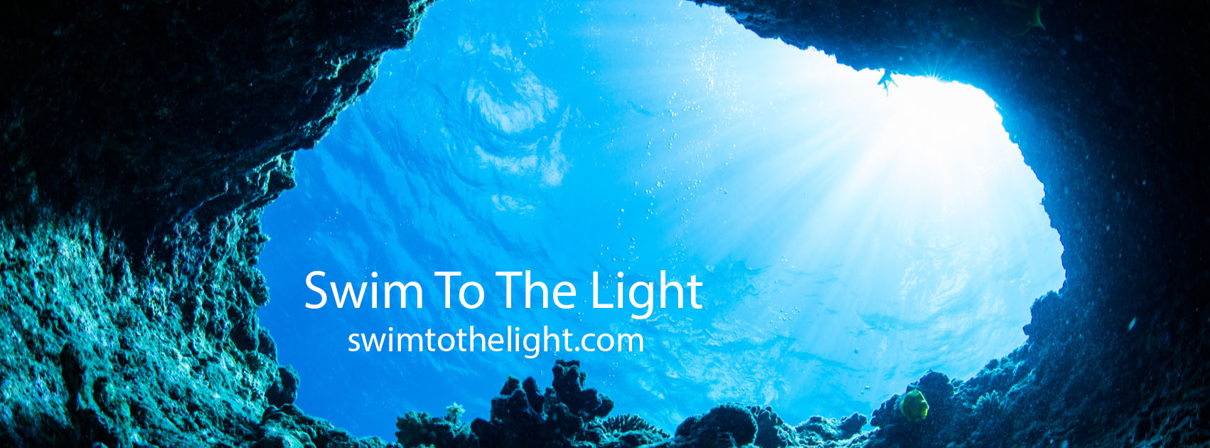 Swim To The Light Logo